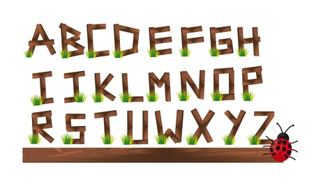 wooden alphabet with grass and ladybird, Illustration Vector