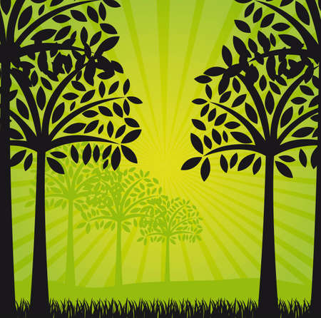 silhouettes trees over green background. illustration Stock Vector - 12493114