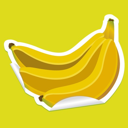 bunch of bananas sticker on green background Vector