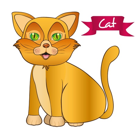 yellow cat sitting issolated over white background Stock Vector - 13035098