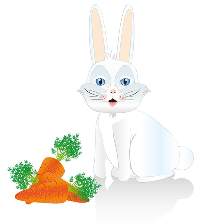 White rabbit sitting isolated on white background with carrots Stock Vector - 13035159