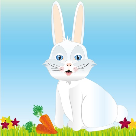 Rabbit background with grass, flowers and carrots, vector illustration Stock Vector - 13035194
