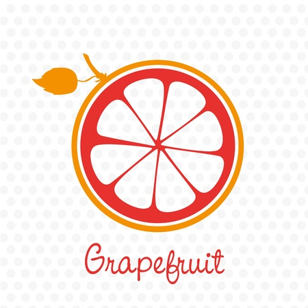simplified: simplified silhouette grapefruit stem and leaf, vector illustration