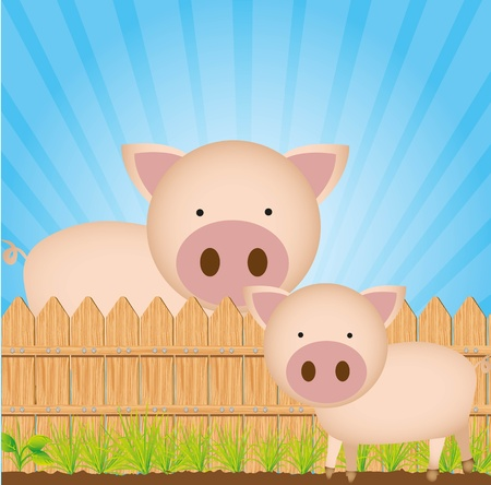 pig tails: cute cartoon pigs with wooden fence