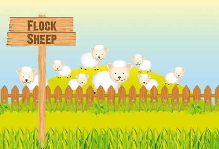 flock of sheep: nature Illustration
