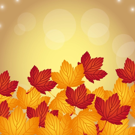 autumn leaves over gold background. vector illustration Vector