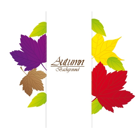 autumn leaves with space   Stock Vector - 13338207