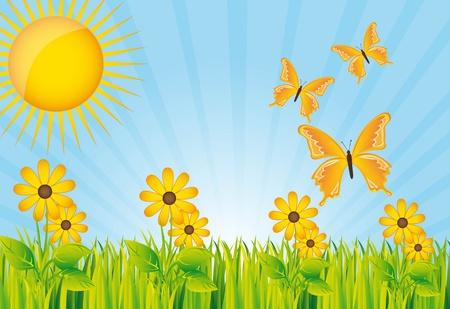 beautiful garden with yellow flower and butterflies.  Vector