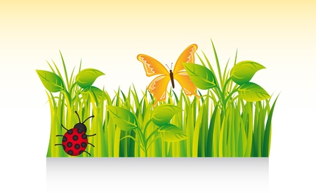 beautiful grass with ladybug and butterfly.  Stock Vector - 13331856