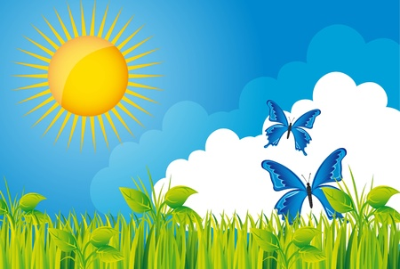 beautiful garden with grass and butterfly over sky.  Vector