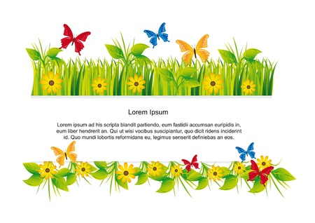 butterflies with grass with space for copy, nature. Stock Vector - 13440566