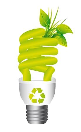 eficiencia energetica: bombilla de luz de la ecolog�a aislado sobre fondo blanco.