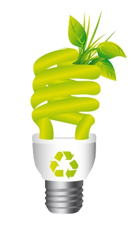 environmental conservation: ecology light bulb isolated over white background.