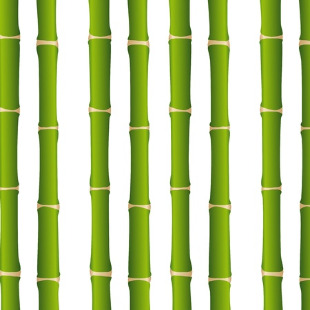 bamboo sticks over white background, close up. Stock Vector - 13439084