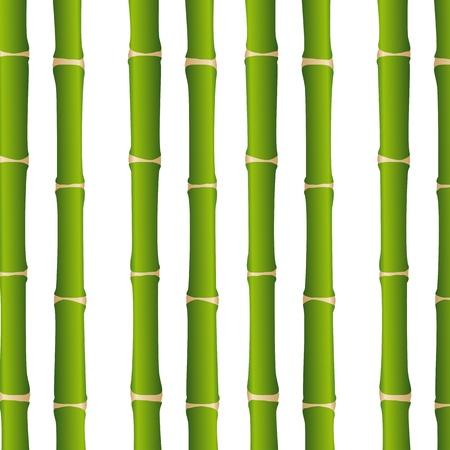 zen garden: bamboo sticks over white background, close up.  Illustration