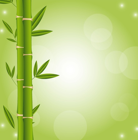 bamboo sticks with space for copy, green background.  Vector