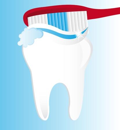 brushing teeth over blue background. vector illustration Stock Vector - 13599625