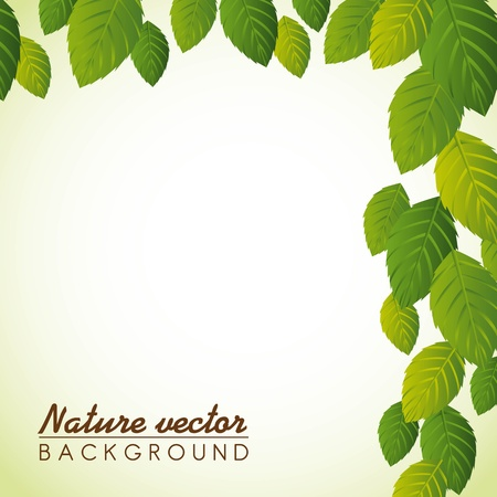 leaves over green background Stock Vector - 14215120