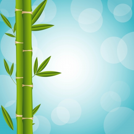 bamboo over blue background Stock Vector - 14215015