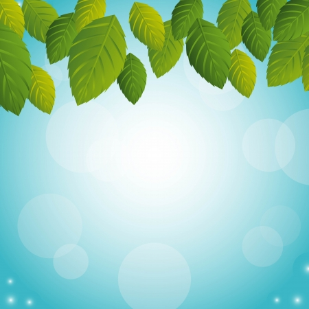 green leaves over sky background Stock Vector - 14215107