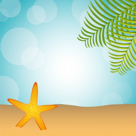 beach with palm and starfish over sand Vector