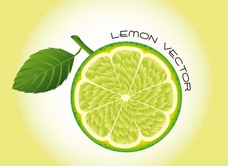 lemon fruit over green background. vector illustration Vector