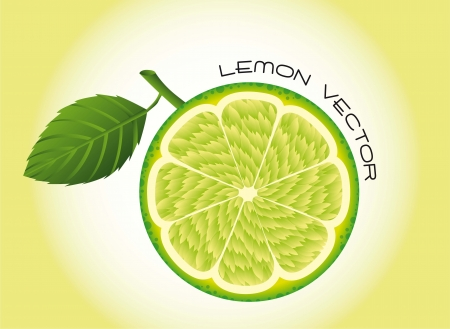 lemon fruit over green background. vector illustration Vector