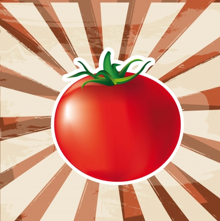 greengrocer: tomato with grunge background. vector illlustration Illustration