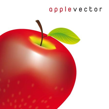 red apple over white background. vector illustration