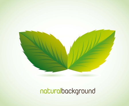 green leaves with shadow over green background. vector illustration