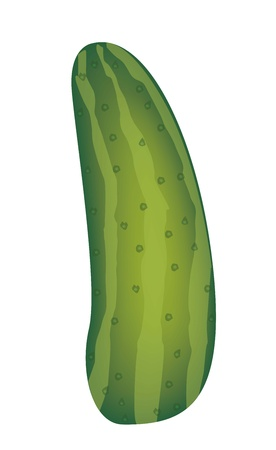 green cucumber isolated over white background. vector illustration Stock Vector - 14944587