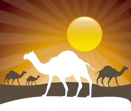 silhouette camels over evening background. vector illustration Vector
