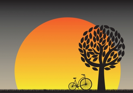 beautiful sunset in the field with a bicycle Vector