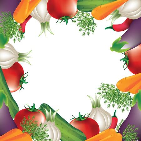 kitchen garden: tomato,carrot,onion, over white background