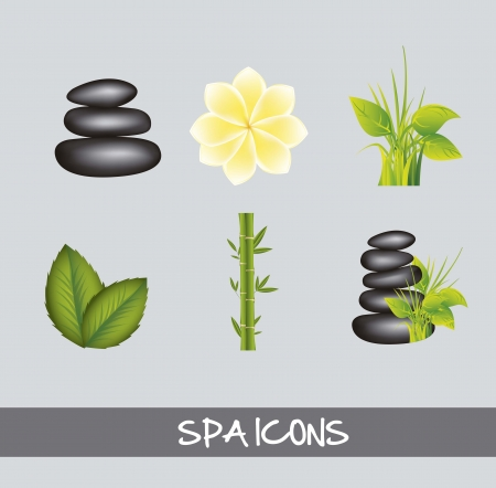 spa icons over gray background. vector illustration Stock Vector - 15888364