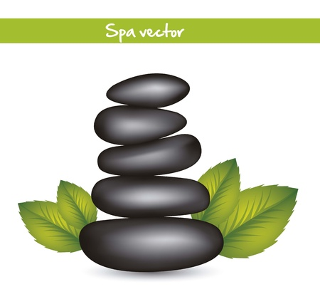black stones spa with leaves. vector illustration Stock Vector - 15888694