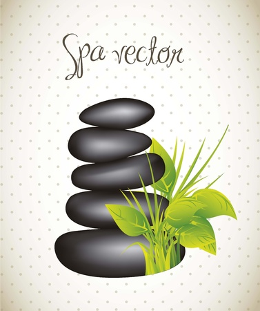 black stones spa with leaves Stock Vector - 15888761