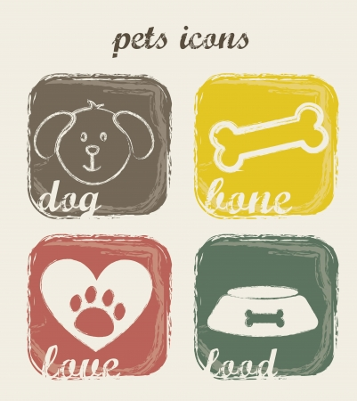 t bone: pets icons over beige background. vector illustration