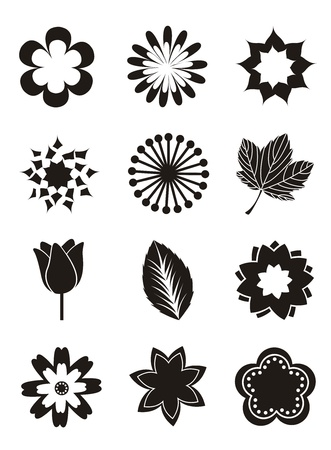 vector flowers: flowers icons over white background. vector illustration