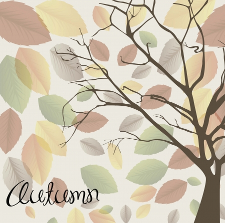 Autumn background with dry leaves Stock Vector - 16477335