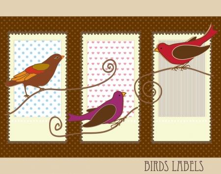 naturalist: Birds Labels with vintage colours, vector illustration