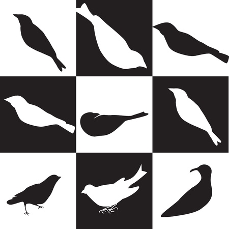 Black and white  birds silhouettes with  background, vector illustration. Stock Vector - 16476554