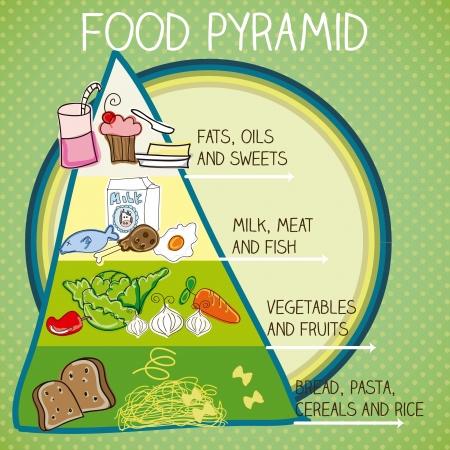 piramide alimenticia: La pirámide de los alimentos. Ilustración vectorial colorido con el texto