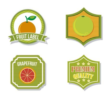 etiquetas de cítricos sobre fondo aislado. ilustración vectorial