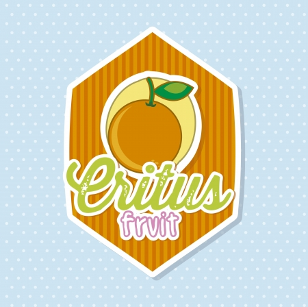 citrus fruit label over blue background. vector illustration Stock Vector - 17868839