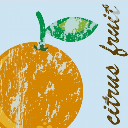 citrus fruit over blue background, orange. vector illustration Stock Vector - 17869131