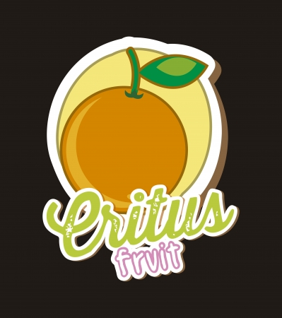 citrus fruit over black background, orange. vector illustration Stock Vector - 18073011