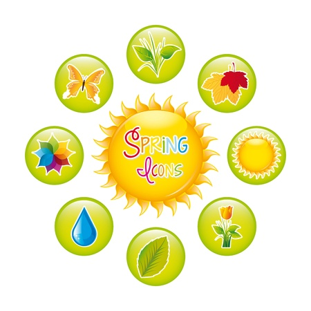 spring icons isolated over white background. vector illustration Stock Vector - 18073703