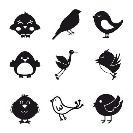 paloma caricatura: aves iconos sobre fondo blanco.