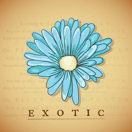 naturism: Exotic Blue Flower, on vintage background. Vector illustration